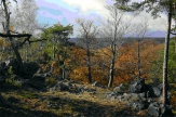 Strážný duch křivoklátských lesů