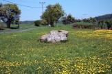Čertův kámen u Mutějovic
