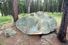 Boží kámen u Sosně