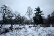 První prosincový sníh na Jesenicku