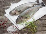 Prodej čerstvých ryb