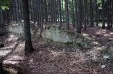 Pravěké hradiště Louštín