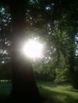 Sluníčko a pokaždé jinak